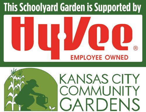 Schoolyard garden program grows in the Northland